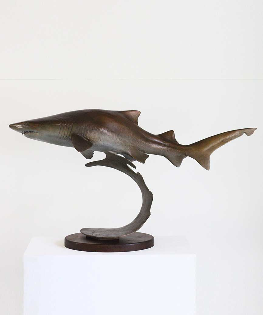 Chris Bladen Sculpture Ragged-Tooth Shark