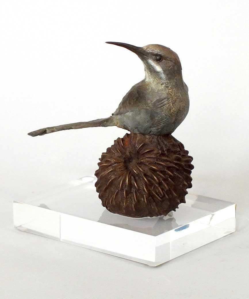 Cape Sugarbird Bronze Sculpture