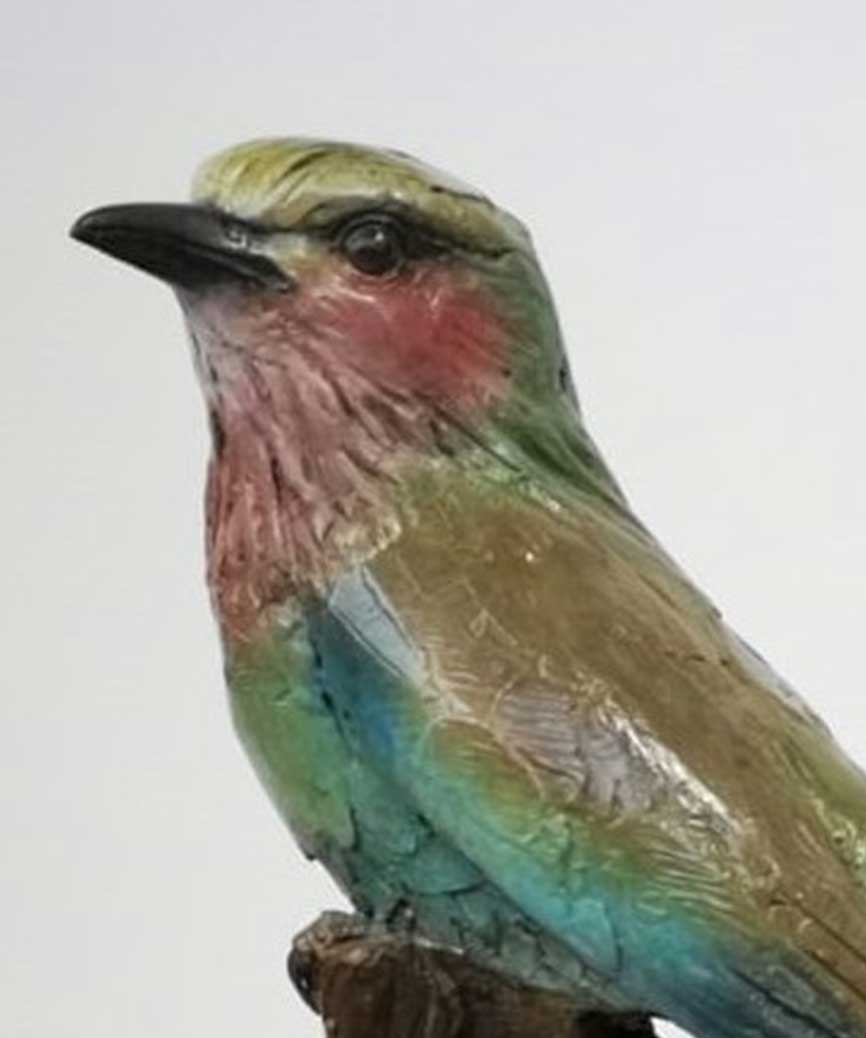 Chris Bladen Lilac Breasted Roller