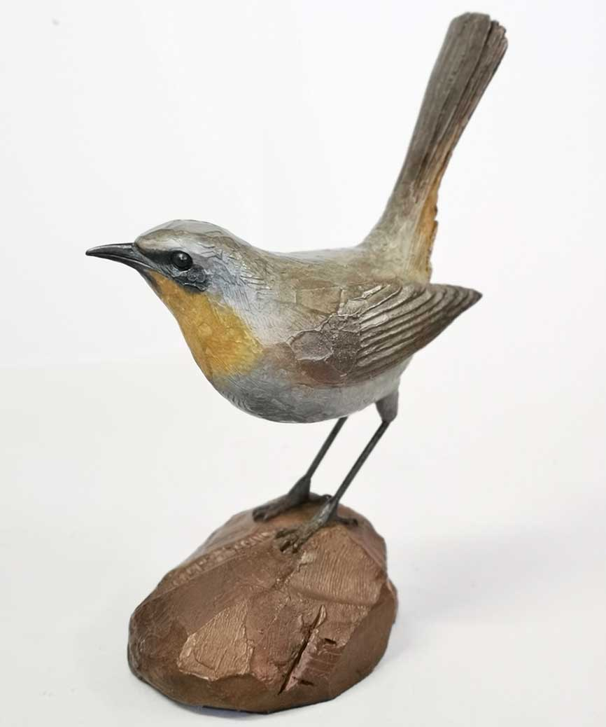 Chris Bladen Robin on a Rock